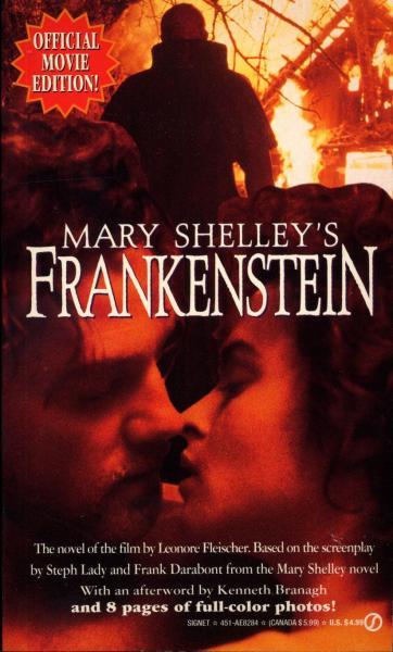the moral ambiguity in frankenstein a novel by mary shelley